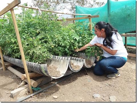 macarena-valdés-y-horticultura