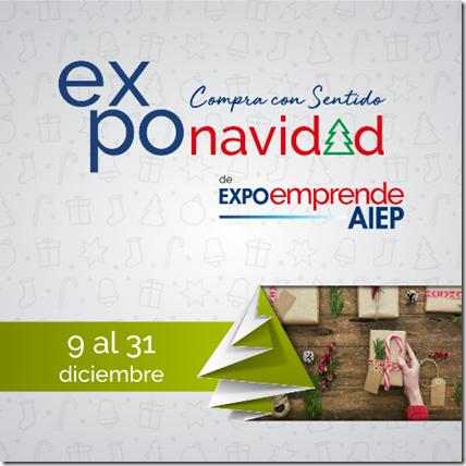 Afiche Expo Navidad